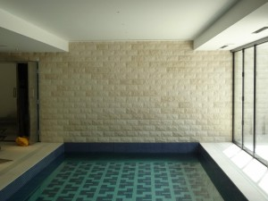 Tiled Walled and Mosaic Swimming Pool